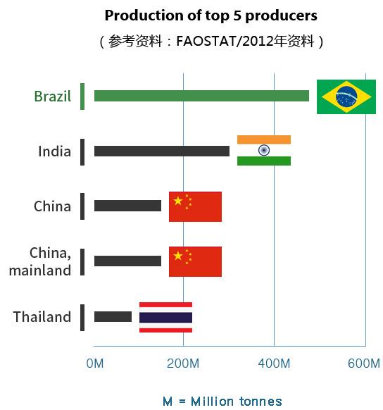사탕수수 생산국가 비교표